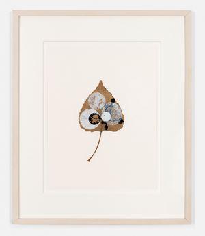 Crosseyed Leaf by Gabriel Orozco contemporary artwork