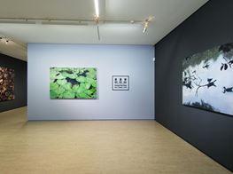 "Huang Chia-Ning<br><em>Facts・Realities・Truth 攖真・滢真・應真</em><br><span class=""oc-gallery"">Lin & Lin Gallery</span>"