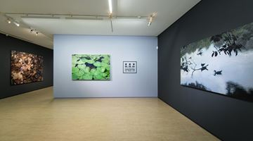 Contemporary art exhibition, Huang Chia-Ning, Facts・Realities・Truth 攖真・滢真・應真 at Lin & Lin Gallery, Taipei
