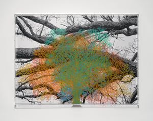 Numbers and Trees: London Series 1, Tree #4, Devonshire Row by Charles Gaines contemporary artwork painting, photography