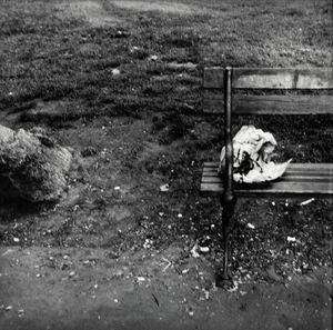 Central Park by Robert Rauschenberg contemporary artwork