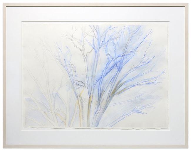 The Pin Oak 4/09 by Sylvia Plimack Mangold contemporary artwork