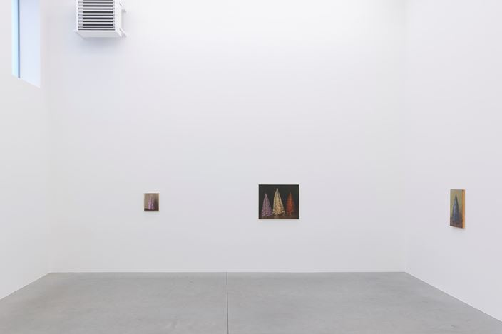 Exhibition view: Michaël Borremans, Coloured Cones, Zeno X Gallery, Antwerp (28 October–19 December 2020). Courtesy Zeno X Gallery.