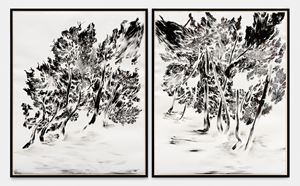 Trees of Miracle - Souffle by Abdelkader Benchamma contemporary artwork