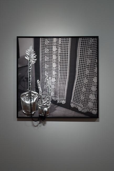 #rothwellofficeplants, @miriam_kelly_ by Caroline Rothwell contemporary artwork