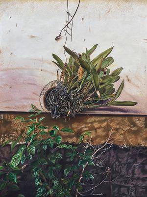 Hanging Plant by Marina Cruz contemporary artwork