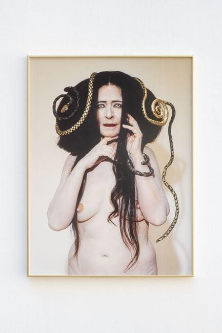 Gorgone V (apparition) by Dominique Gonzalez-Foerster & Camille Vivier contemporary artwork