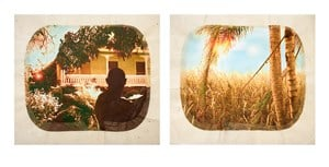 Plantation (Diptych No. 1) by Tracey Moffatt contemporary artwork