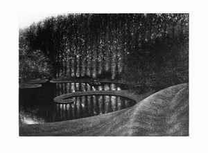 Snail Mound by Stefanie Hofer contemporary artwork