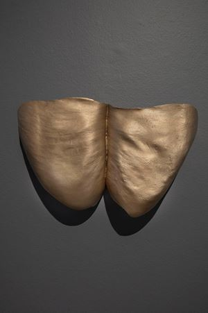 Thunder Thighs, Shield by Julie Rrap contemporary artwork
