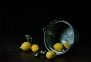 Citrons by Nicolas Wilmouth contemporary artwork