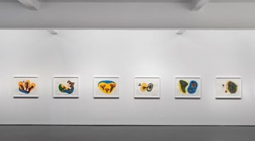 Contemporary art exhibition, Patricia Piccinini, And colour is their flesh at Tolarno Galleries, Melbourne