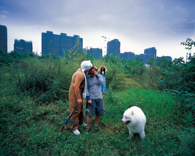 Bear & Bear No.5 by Ji Yu contemporary artwork