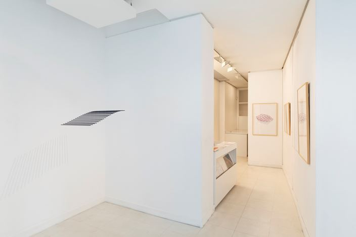 Exhibition view: Elias Crespin, Denise René Galerie, Espace Marais (17 January–23 May 2020). Courtesy Denise René Galerie.