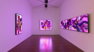 Contemporary art exhibition, Harley Ives, Garlands for YouTube at Roslyn Oxley9 Gallery, Sydney