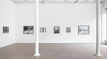Contemporary art exhibition, Gerard Byrne, Jielemeguvvie guvvie sjisjnjeli – A film inside an image & some related works at Galerie Greta Meert, Brussels