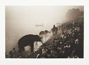 The Great Elephant Festival at the River Gandak, near Patna, India by Don McCullin contemporary artwork