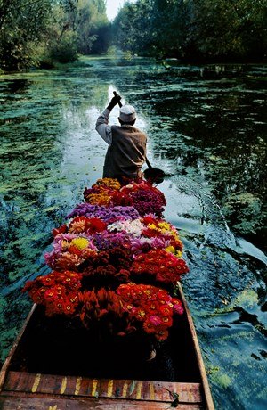 INDIA. Jammu and Kashmir.  Srinagar. Flower Seller at Dal Lake. by Steve McCurry contemporary artwork