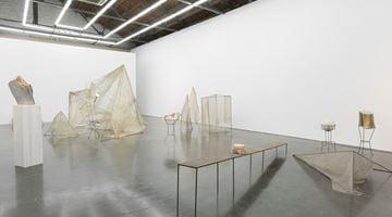 Contemporary art exhibition, Hu Xiaoyuan, Grass Thorn at Beijing Commune, China