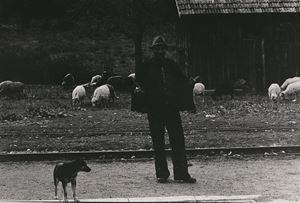 Shepherd by Tsun-shing Cheng contemporary artwork