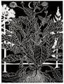 Calathidium by Paul Morrison contemporary artwork 3