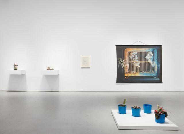Exhibition view: Tetsumi Kudo, Metamorphosis, Hauser & Wirth, 22nd Street, New York (5 May–30 July 2021). © 2021 Artists Rights Society (ARS), New York / ADAGP, Paris.Courtesy Hiroko Kudo, the Estate of Tetsumi Kudo.