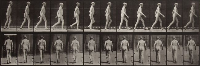 Lateral curvature of spine, walking by Eadweard Muybridge contemporary artwork