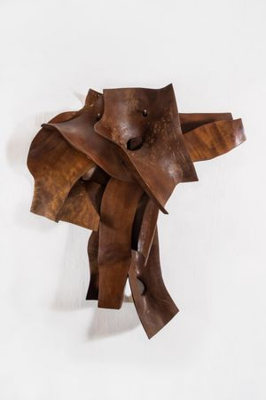 Pele XVI by Marcelo Silveira contemporary artwork