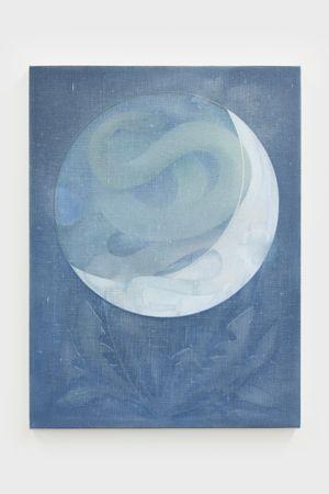 The Snake, No. 7 by Theodora Allen contemporary artwork