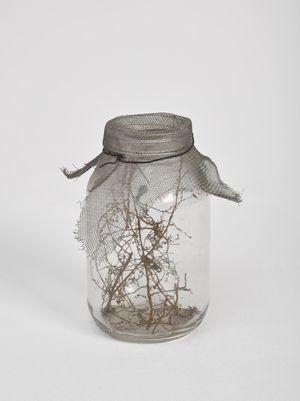 Fly Jar by David Hammons contemporary artwork sculpture