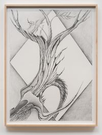 Fossil #8 (...A Half Burned Out Apple Tree Blossoming) by Faith Wilding contemporary artwork works on paper, drawing
