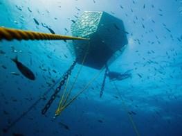 Move over, Neptune. Doug Aitken has another big idea