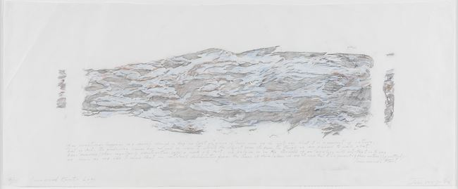 Immanuel Kant's Log by John Wolseley contemporary artwork