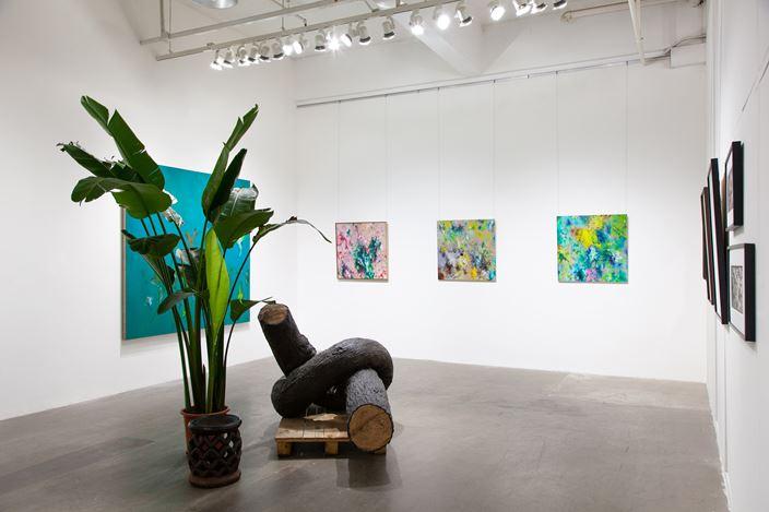 Exhibition view:Cai Jin in Hanart's Botanical Garden 植物公園內的蔡錦, Hanart TZ Gallery, Hong Kong (28 November 2020–2 January 2021). Courtesy Hanart TZ Gallery.