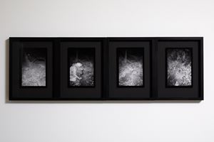 Frameshift 1–4 by Anne Noble contemporary artwork