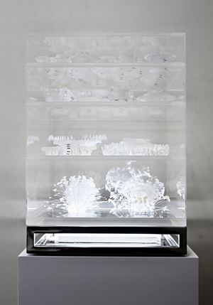 Exotic Trophies by Grace Tan contemporary artwork