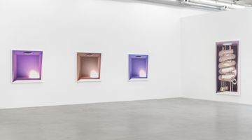 Contemporary art exhibition, Mehdi Ghadyanloo, To You from the Sun at Almine Rech, Brussels