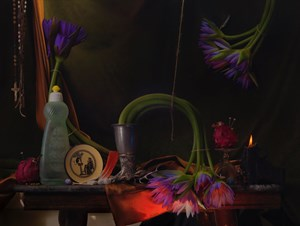 Still Life with Waterlilies, Dragon Fruit and Sphynx, Ripiro by Fiona Pardington contemporary artwork
