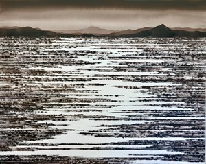Flooded Desert by David Middlebrook contemporary artwork