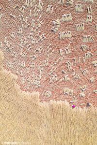 'Yunnan #9', Water and Earth, China by Tugo Cheng contemporary artwork photography, print