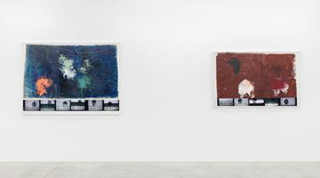 Contemporary art exhibition, Rudolf Polanszky, Chimera at Almine Rech, Brussels