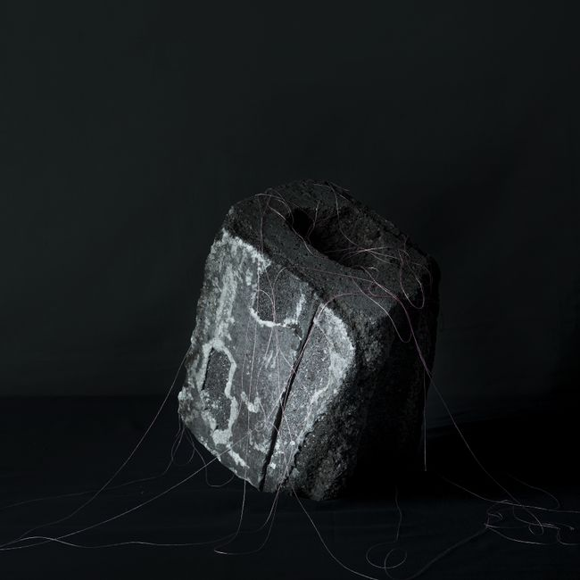 Last Remnant by Seongyeon Jo contemporary artwork