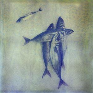 Silentium #24 by Euro Rotelli contemporary artwork