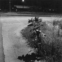 Longmont, Colorado by Robert Adams contemporary artwork photography