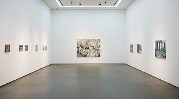 Contemporary art exhibition, Laura Lancaster, Solo Exhibition at Wooson Gallery, Daegu