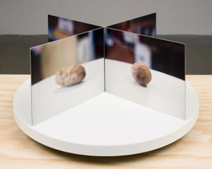 Film-Object (Potato) by Lucas Blalock contemporary artwork