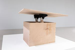 Do it 做吧 by Erwin Wurm contemporary artwork sculpture, performance