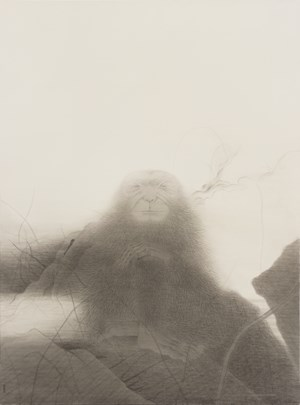 Wild Grass, Old Ape by Shao Fan contemporary artwork