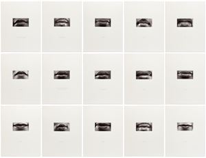 15 Mouths by Lorna Simpson contemporary artwork