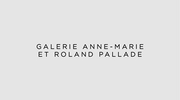 Galerie anne-marie et roland pallade contemporary art gallery in Lyon, France